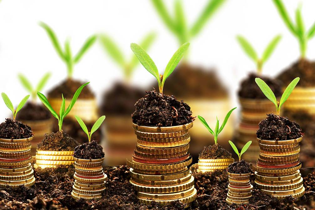 Seeking Funds for Expansion? Here're the Right Ways to Approach Investors
