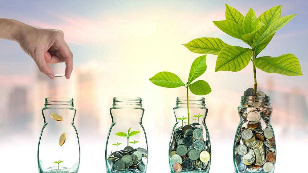 3 Reaping Investment Opportunities to Use This Year